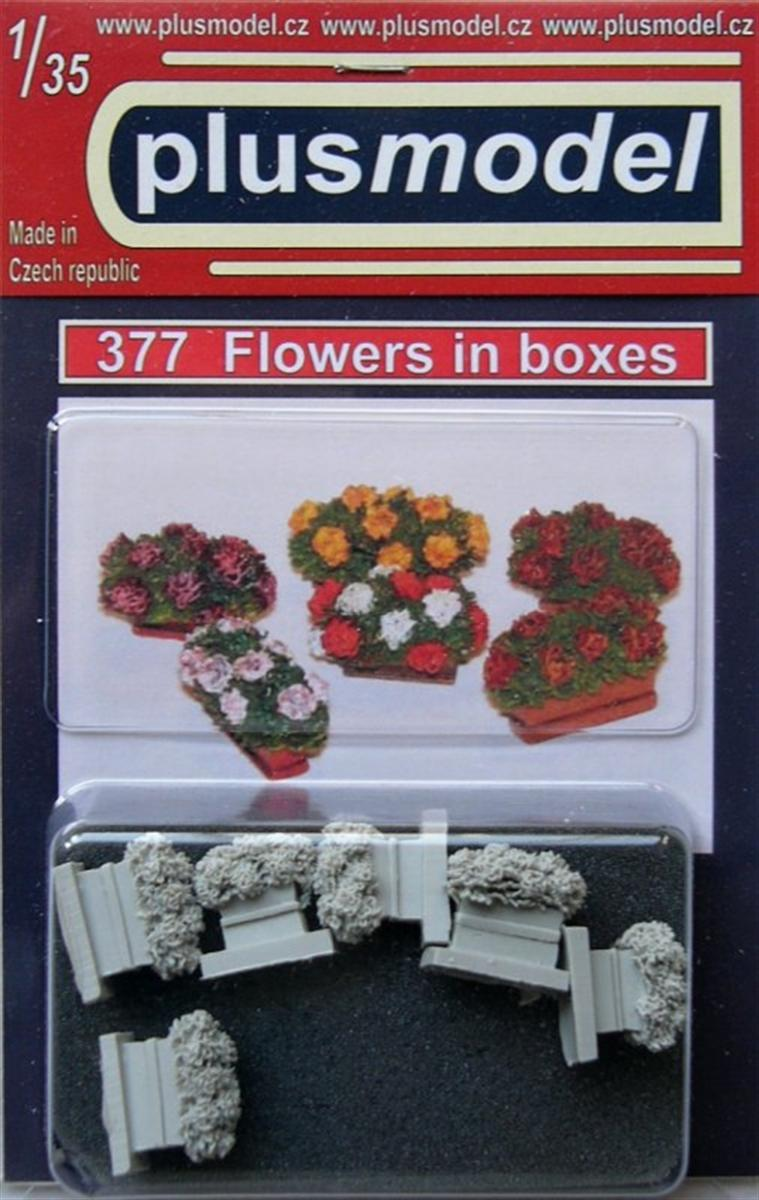 Plus Model Flowers in boxes