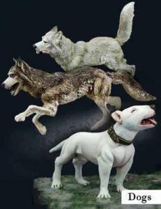 Scale75 DOGS