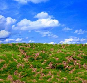 Reality in Scale Wild Grass & Hills Type 2 - medium brown earth, irregular surface