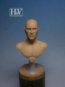 Heroes & Villains Anathomic Bust Male 1/12