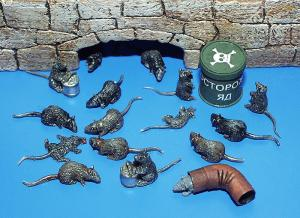 Plus Model Rats