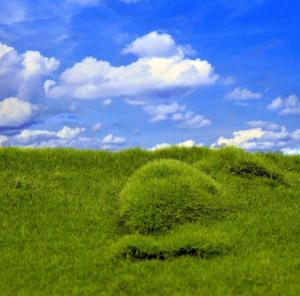 Reality in Scale Plain Grass & Hills