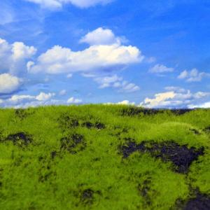 Reality in Scale Wild Grass & Hills Type 4 - blackbrown earth, irregular surface
