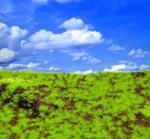 Reality in Scale Wild Grass & Hills Type 3 - medium brown earth, light green grass, irregula