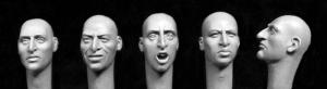 Hornet Models 5 heads with aquiline features