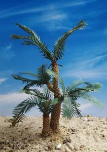 Reality in Scale Cycad Palm - contains resin trunk, scatter, wire, instructions and 24 leave