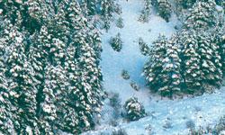 Vallejo Foam & Snow - 32 ml